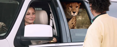Animal Cruelty, Animals in Entertainment, Cameron Diaz, Brad Pitt, The Counselor, Movies with Animals
