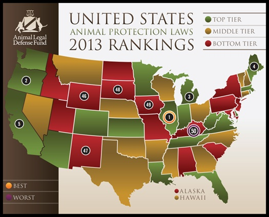 Animal Legal Defense Fund 2013 ranking for Animal Protection Laws. Illinois being ranked first the sixth year in a row. (Photo Credit: Animal Legal Defense Fund) (Animal Cruelty, Animal Laws, National Laws)