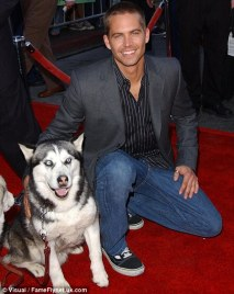 Paul Walker and Husky dog at Eight Below movie premiere