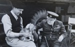 montgomery Churchill Dog
