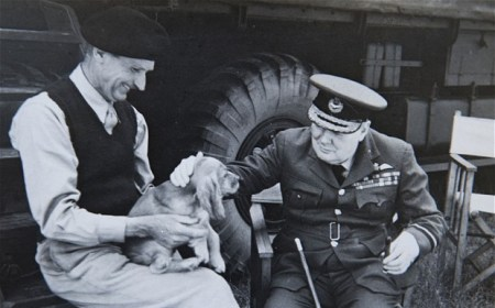 The most hardened of men are softened by a dog. Montgomery and Churchill with Rommel the dog. Photo: Bosleys/BNPS
