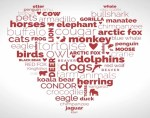 loveanimals.org crowdfunding site for nonprofit animal rights and activists groups