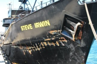 Damage done to the Steve Irwin from a collision with a Japanese whaling vessel. (SEA SHEPHERD/WHALING)