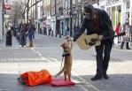 Street Cat Named Bob and James Bowen high fiving