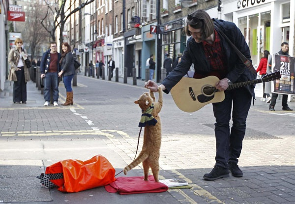 "Street musician James Bowen busks with cat Bob in Covent Garden in London March 13, 2012. Bowen has written a book named ""A Street Cat Named Bob"" about the experiences of the then homeless pair and how they met. Photo Credit: usa.chinadaily.com.cn"