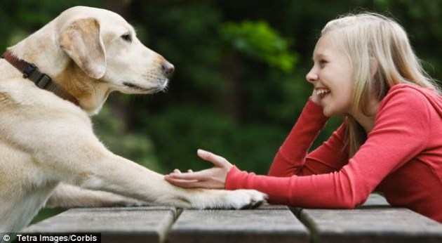 Many people dream of talking to their pets (illustrated) and Dr Ian Duncan is devising ways of 'talking' to animals to ask them questions about their welfare and happiness. Photo Credit: Tetra Images/Corbis