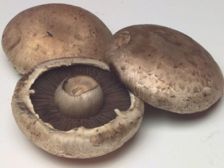 Mushrooms are low in calories, fat-free, cholesterol-free, gluten-free, and very low in sodium, yet they provide important nutrients, including selenium, potassium, riboflavin, niacin and vitamin D. /Photo credit: naturesfinestproduce.com