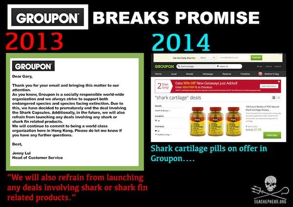 Groupon, Shark, Shark Products, Shark Cartilage, Animal Welfare, Sea Shepherd
