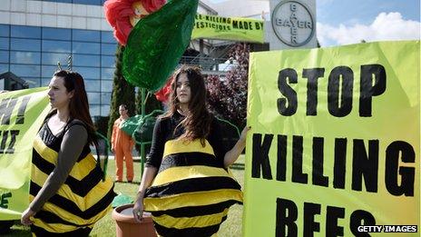 Stop Killing Bees protestors