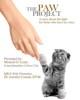 """""""The Paw Project"""" is a documentary that explores the harms of declawing your cat. Photo credit: catster.com"""