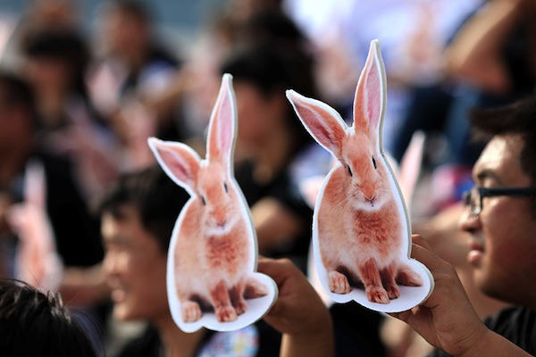 Animal Cruelty, Animal Testing, China, Cosmetics, Cosmetic Testing
