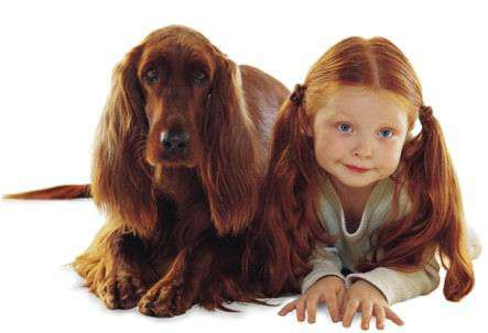 Similar hairstyle is not the only reason why people look like their pets. Photo credit: TrendHunter