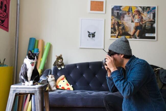 How to take cute animal, dog photos
