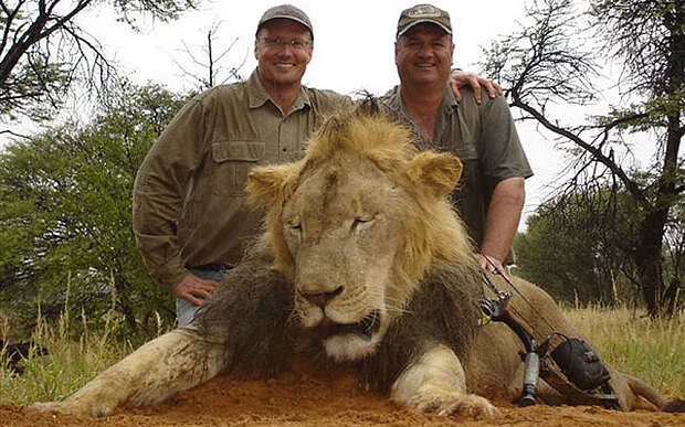 In July 2015, Walter Palmer (left) tracked and killed Cecil the legendary lion in Zimbabwe. Here, he poses beside one of his many trophy hunts. Photo Credit: Telegraph UK