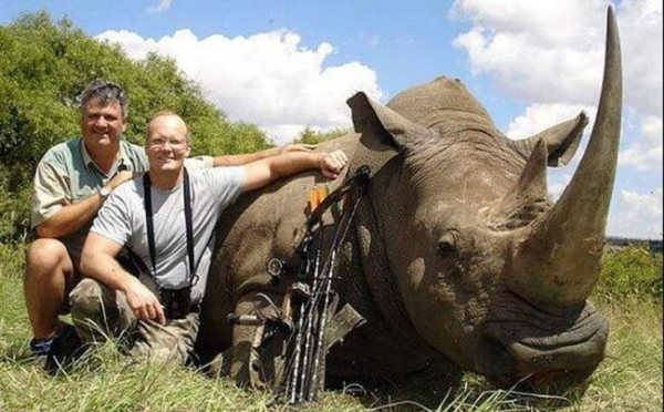 Walter Palmer with another trophy hunt, a dead rhinoceros. Photo Credit: Trophy Hunt America
