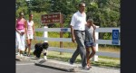 Bo Obama joins the first family in Bar Harbor, Maine, in July 2010 AP Photo