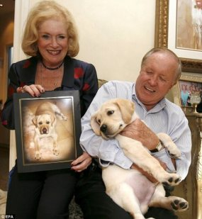 Edgar and Nina Otto spent $155,000 to clone their beloved Labrador Sir Lancelot. Photo Credit: Daily Mail