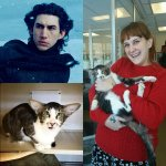 cat that looks like Kylo Ren Adam Driver from star wars gets adopted