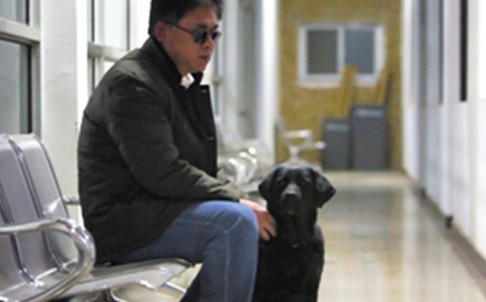 In The Public Eye: Blind Man Reunited With Stolen Guide Dog