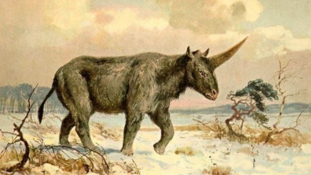 Painting of Elasmotherium sibiricum by Heinrich Harder, ca. 1920 Photo Credit: Heinrich Harder, Wikimedia Commons