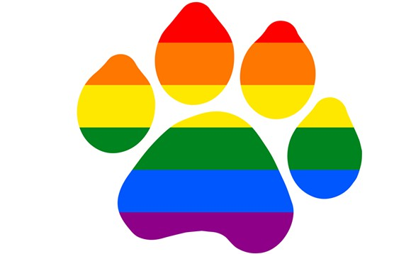 Orlando-based animal organizations are offering to help pets of victims and families affected by the Pulse nightclub shooting over the weekend. Photo Credit: