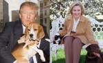 2016-presidential-candidates-donald-trump-and-hillary-clinton-pose-with-dogs