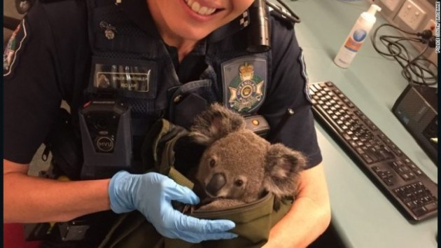 Photo Credit: Queensland Police