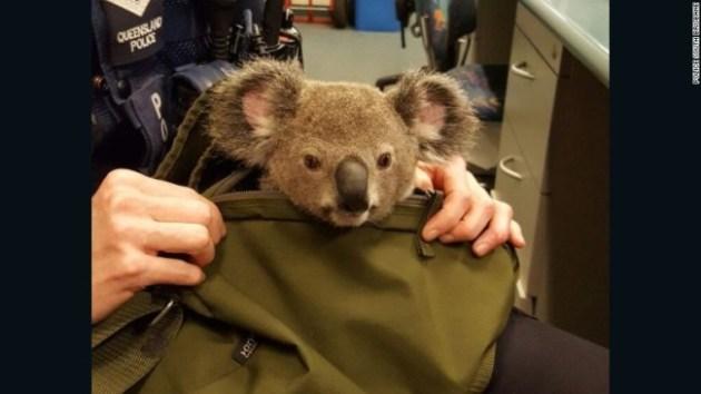 Photo Credit: Queensland Police via AP Photo