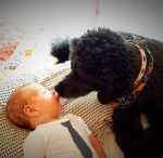 baby-with-black-poodle