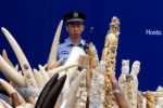 Chinese police officer watches over ivory products prepared for destruction during ceremony