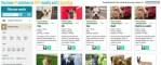 Pawslikeme rescue dog matching website