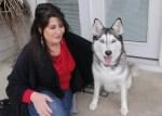pet custody legislation