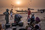 Vendors and wives of fishermen waiting for fishing boats to return to Joal, Senegal, West Africa