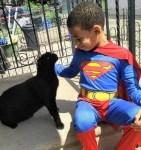 Shon boy wearing Superman costume with street cat Bug