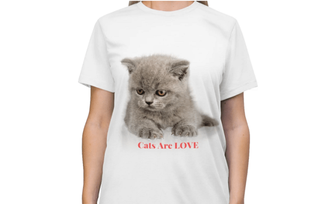 Innovative gifts for the cat lover- What to get them
