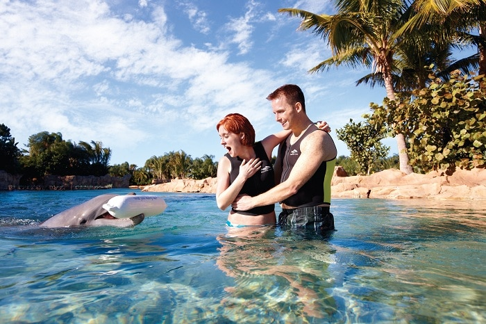 DISCOVERY COVE - CELEBRATING LIFE'S SPECIAL MOMENTS