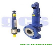 ARI SAFE Safety Valve