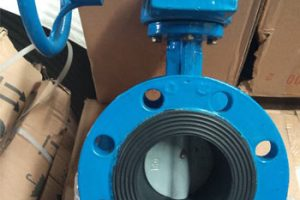 Butterfly Valve PN16 Double Flange