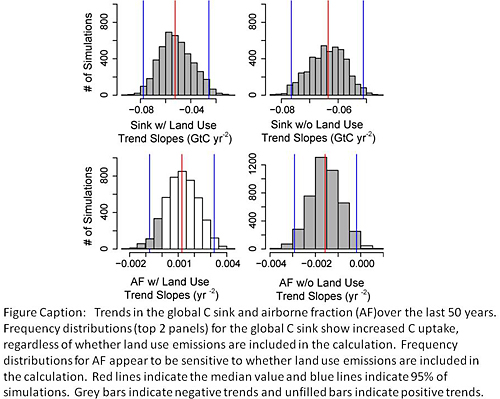 News: Increase in observed net carbon dioxide uptake by