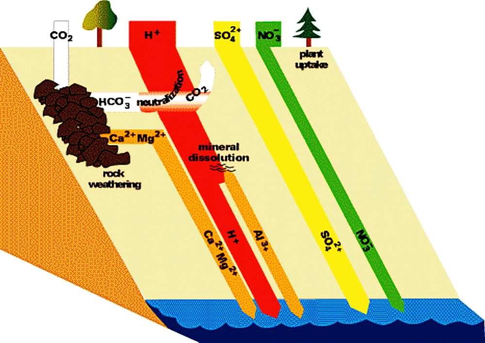 medium resolution of mi acid rain diagram