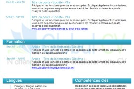 exemple cv turquoise