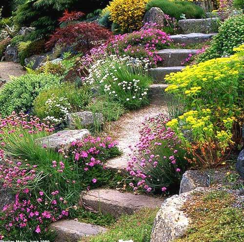 Giardiniere a Roma  Servizi completi di giardinaggio