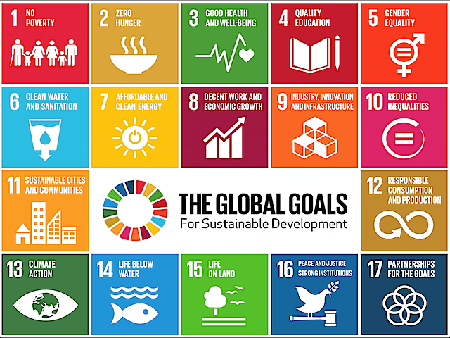 Risultati immagini per Sustainable Development Goals