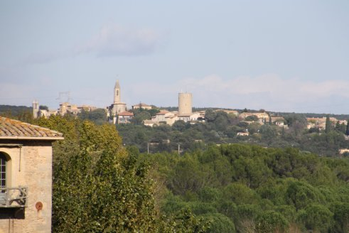 The view from the top of the Pont du Gard