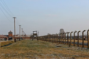 EVERY PICTURE TELLS A STORY – Visiting Auschwitz-Birkenau