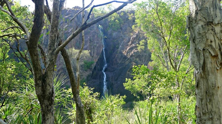 litchfield Wangi Falls
