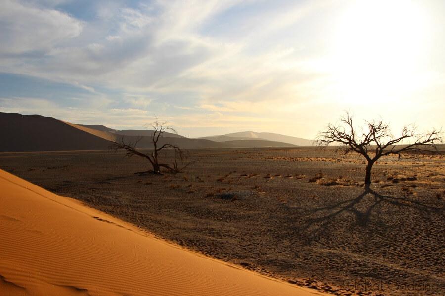 Dune 45 Base Sossusvlei