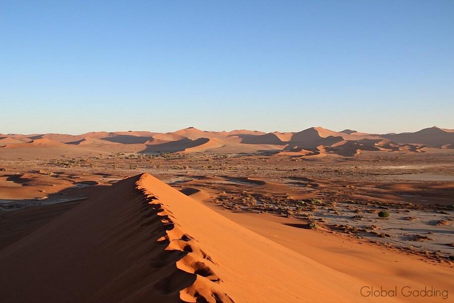 big daddy sand dune sossusvlei