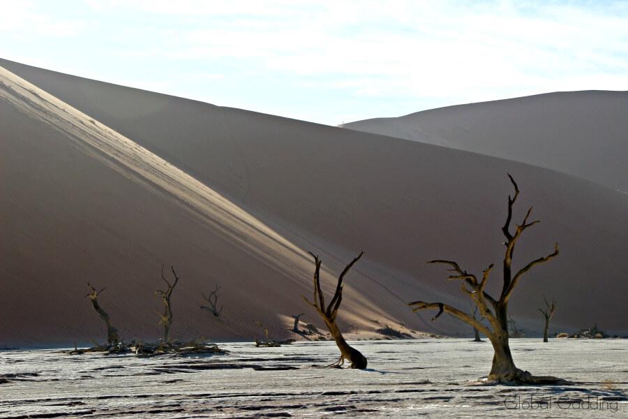 deadvlei sossusvlei sand dunes