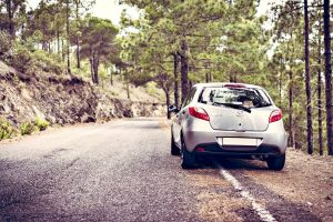 Guide To Hiring a Rental Vehicle – Tips And Advice